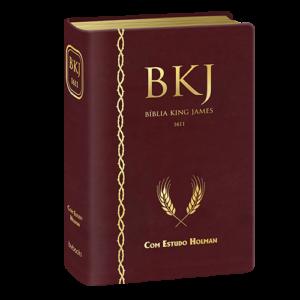 Bíblia King James De Estudo Holman – Vinho (Português) Acabamento especial