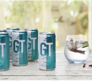 Skol Beats GT – Gin e Tônica 269ml 15 Unidades