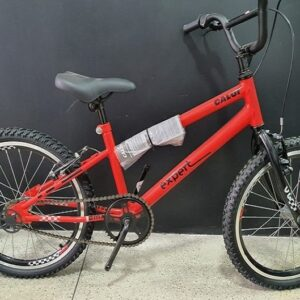 Bicicleta Infantil Aro 20 Caloi Expert Vermelho Freio V-Brake